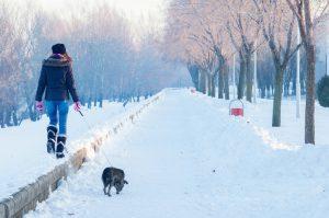 Teenage girl walking dog on cold winter day